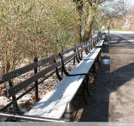 Snow covered benches in Central Park